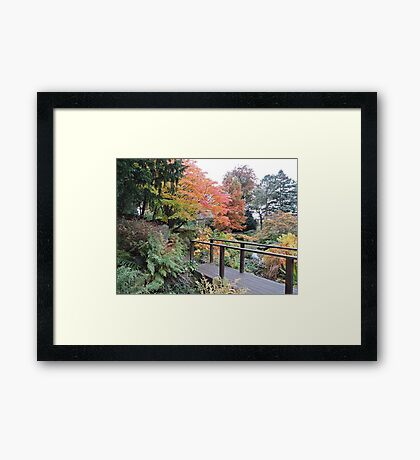 Autumn: Bridge At Botanical Gardens Framed Print