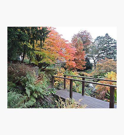 Autumn: Bridge At Botanical Gardens Photographic Print