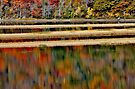 Along the Kennebecasis in Autumn by Kathleen Daley