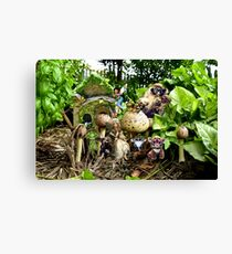 BUSH TROLLS Canvas Print