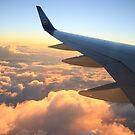 Flyaway by kip13