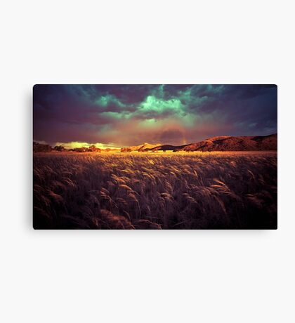 Caught in the Storm Canvas Print