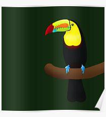 Keel Billed Toucan Poster