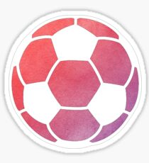 Soccer Ball Multicolored Sticker