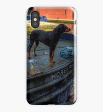 Barge Hound iPhone Case/Skin