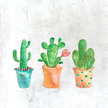 Three Green Cacti Watercolor White by mariaheyens