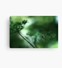 Leaf Fall On Cow Parsley. Jupiter 9 on EOS 7D Canvas Print