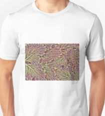 Marvelling Nature's Lines T-Shirt
