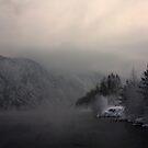 Frostiges Wetter. Berglandschaft mit Fluss von Viktoriia