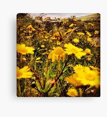 Yellow, yellow Canvas Print