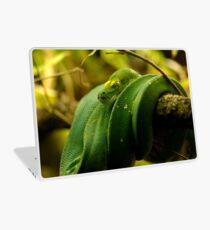 Green Tree Python Laptop Skin