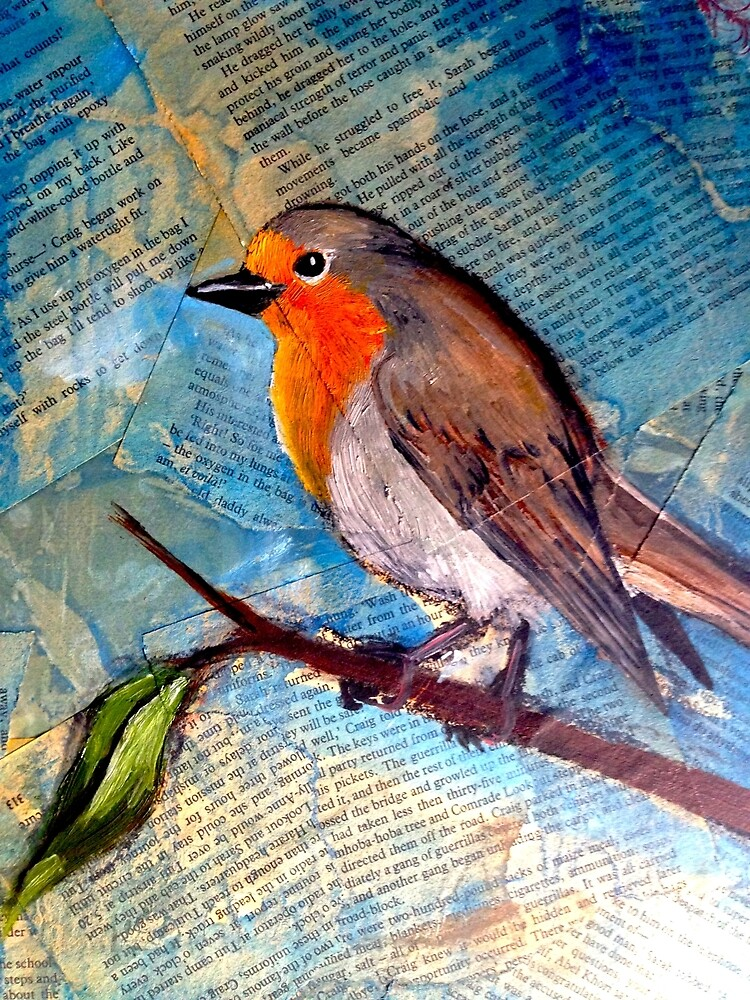 Robin by Skye Elizabeth  Tranter