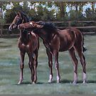 Foal play by Stephanie Greaves