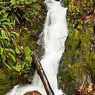 Roadside Waterfall by Jim Stiles