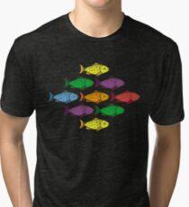 Rainbow Fishes Tri-blend T-Shirt