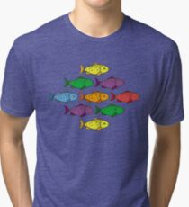 Rainbow Fishes Tri-blend T-Shirt