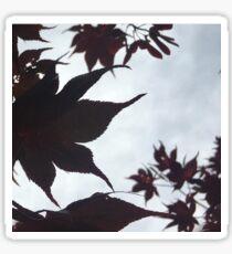 Shadow leaf Sticker
