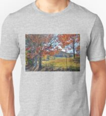 Iolta Valley in the Fall T-Shirt