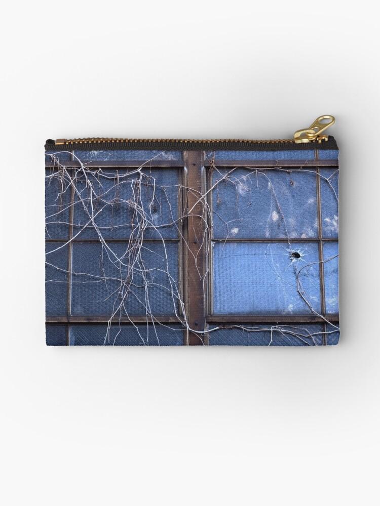 Window Vines by mymamiya