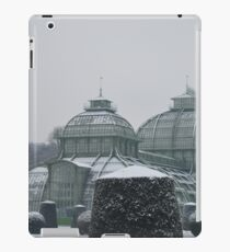 Austria in winter iPad Case/Skin