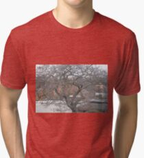 Austrian winter tree Tri-blend T-Shirt