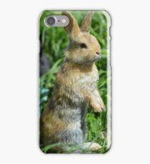 Cornellius the most entertaining bunny ever iPhone Case/Skin