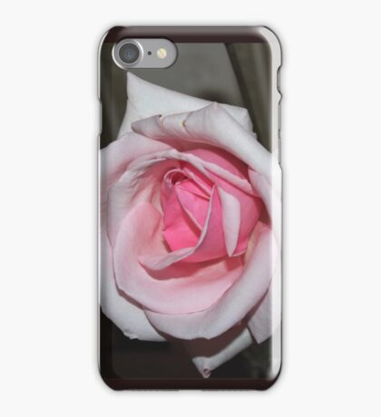Really Pretty Pale Pink Rose iPhone Case/Skin