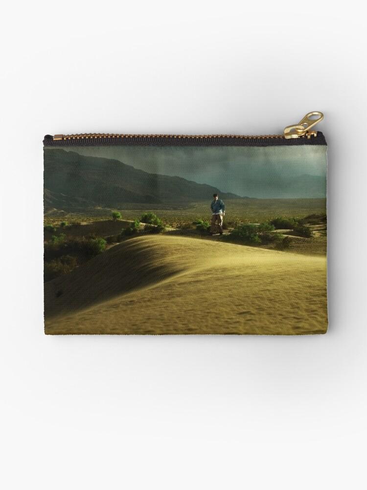 A Stroll in the Desert by BMV1