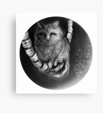 CIRCLE ART - CAT WALKS ON WIRE Canvas Print