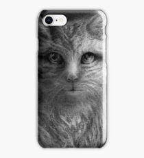 CIRCLE ART - CAT WALKS ON WIRE iPhone Case/Skin