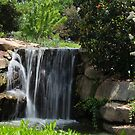 Small HVG Waterfall by Sharon Brown