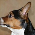 Bonnie in Profile by Sharon Brown