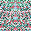 Funky Plaid by Liz Plummer