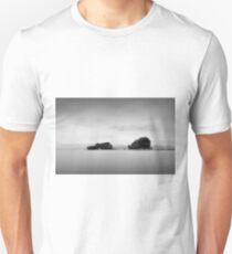 Bird Rock Unisex T-Shirt