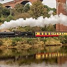 Steaming by The River by Dave Hudspeth