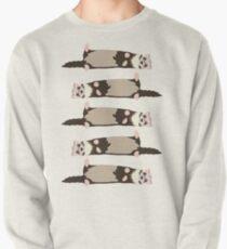 ferrets Pullover