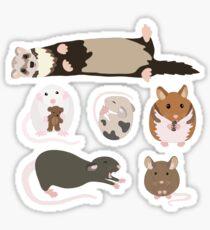 small pets Sticker