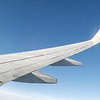Flying High - KLM 737 Wing shot by PlaneMad1997