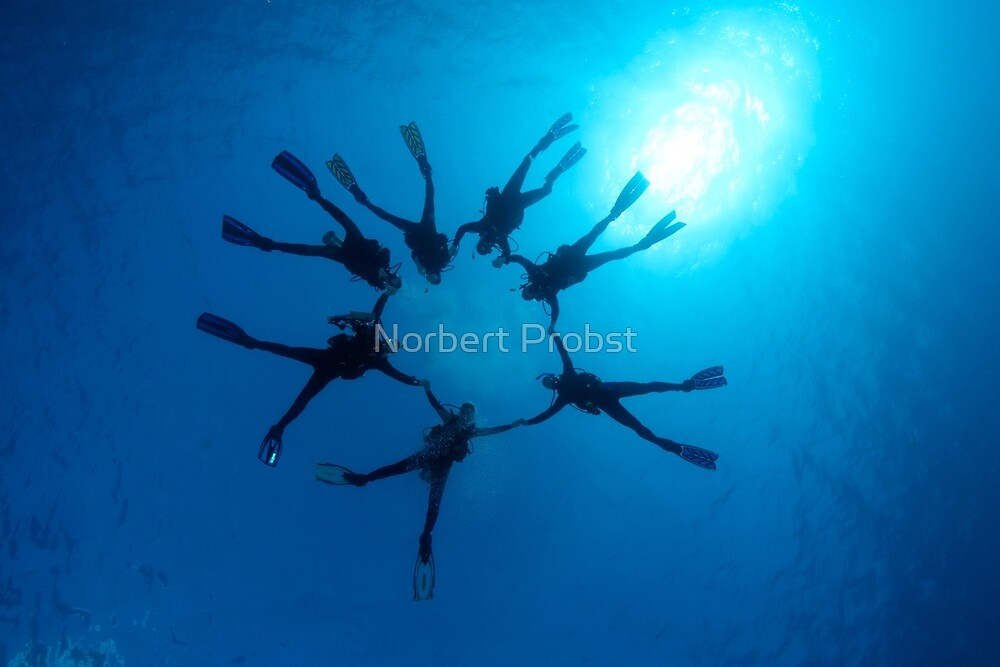 Fun Dive by Norbert Probst