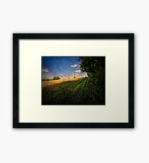 A Path By The Field Framed Print