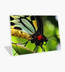 Cairns Birdwing Laptop Skin
