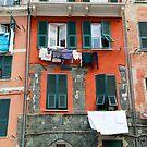 All About Italy. Piece 9 - Vernazza Windows by Igor Shrayer