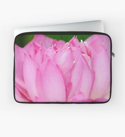 Eye-full of pinkness Laptop Sleeve
