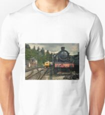 Dumbleton Hall at Buckfastleigh  Unisex T-Shirt