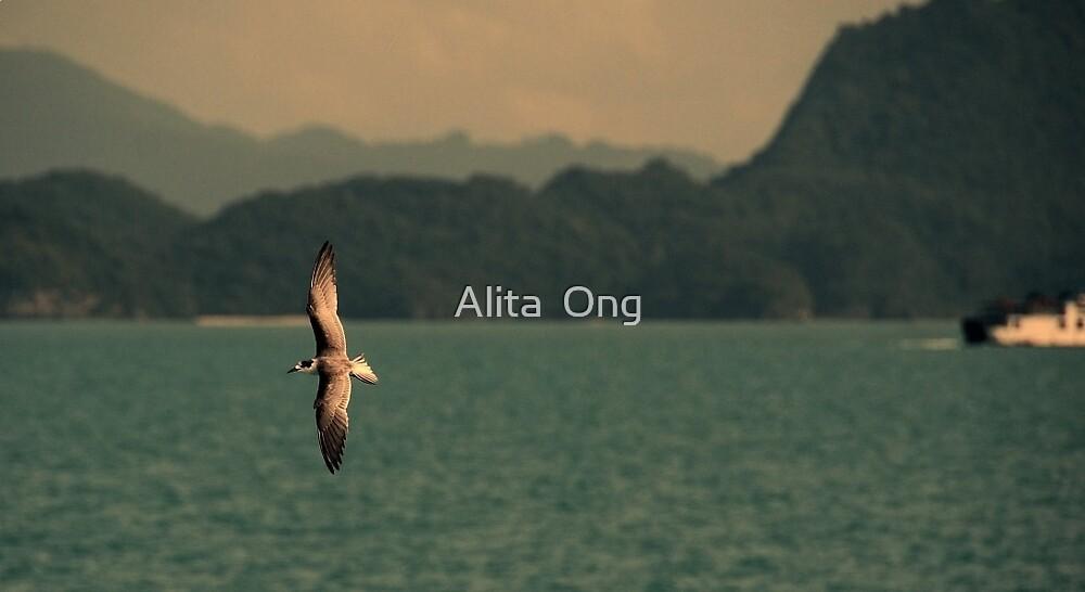 samui by Alita  Ong