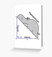 Math Humor Greeting Card