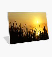 Sunrise Through The Reeds Laptop Skin