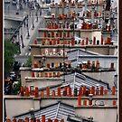 Parisien chimneys by dOlier