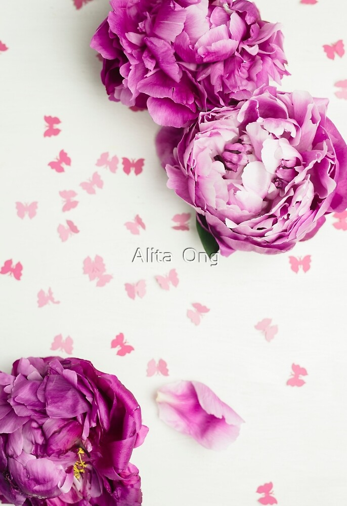 Peony and butterfly by Alita  Ong