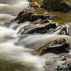 Flowing through the Birks, Aberfeldy Scotland by Cliff Williams